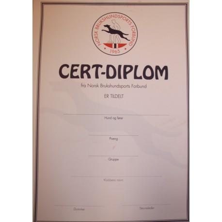 Cert Diplom